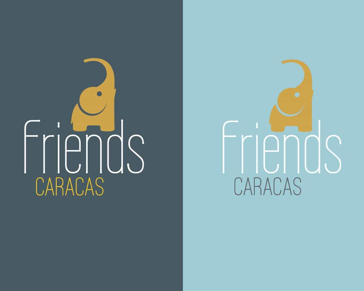 Friends Store Branding Fabi Paolini